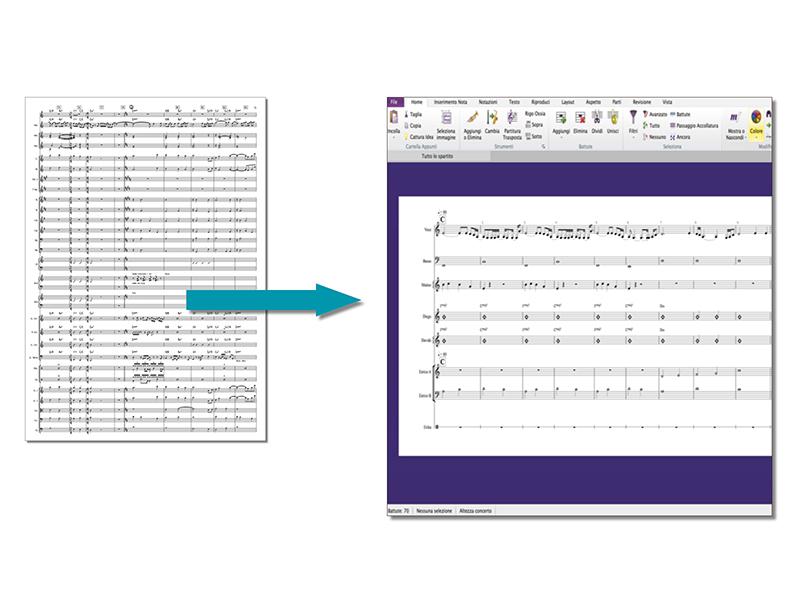 Musica Senza Confini | PMI-Arrangiamento